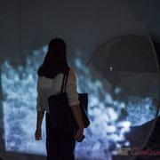2 Métamorphy. Scenocosme : Grégory Lasserre & Anaïs met den Ancxt. Octobre numérique, Palais de l'Archevêché, Arles