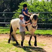 Sentir y descubrir los movimientos del caballo en la equitación