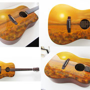 """Buffalo guitar"" , aerografia su chitarra acustica, Olanda"