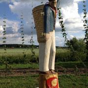 Hopfenpflücker für Bienen, Hopfengarten Lonnerstadt