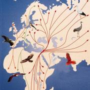 Vogelzug im Nahen Osten