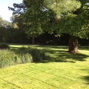 Tonte d'une pelouse à Lasne
