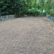 Création de pelouse sur terrain auparavant nettoyer