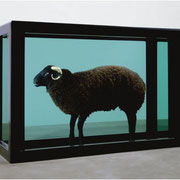 The Black Sheep With The Golden Horn (2008)