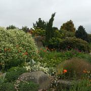 rhs hyde hall dry garden