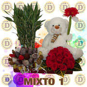 MIXTO 1   $  1300