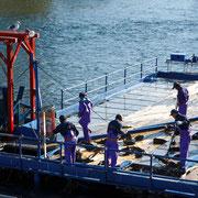 千歳市-千歳川 インディアン水車