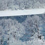 石狩川樹氷