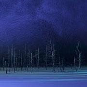 青い池ライトアップ 美瑛川【美瑛町】