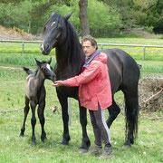 Élevage de chevaux en Ardèche