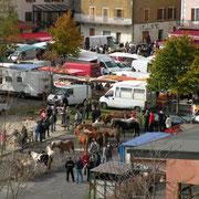 Foire aux chevaux à Saint-Cirgues-en-Montagne