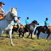 Randonnée à cheval en Ardèche