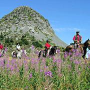 À cheval au mont Gerbier de Jonc