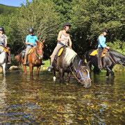 Chevaux et montures traversant une rivière en Ardèche
