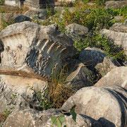 Noch viel zu tun - gute Zukunftsperspektive für Archäologen