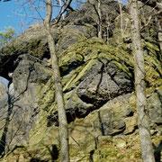 Dachstein (Steinicht)
