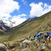im Alpamayotal (Cordillera Blanca)