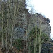 Vogtlandriff (Steinicht)