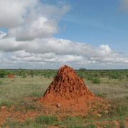 termitaio tsavo est