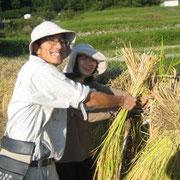 坂本棚田でのお米作り