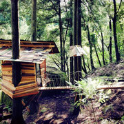 キャンプ場内にあるツリーハウス