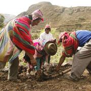 Andenbauern mit ihren traditionellen Gerätschaften