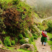 Die Kaffeeroute nach Machu Picchu - eine schöne alternative zum überlaufenen Inca Trail