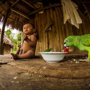 Shipetiari Kind mit seinem Papagei