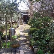 サザコーヒー奥の庭園