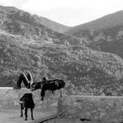 2009, en rando dans la vallée du Jabron