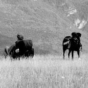"""2004 (rando) - """"Fermé pour congés"""" qu'est-ce qu'il s'est fait attendre ce petit panneau là ! direction le Haut Verdon pour une très belle itinérance"""