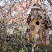 Customized bird house hung in Marstal, on the island of Aero. (Europe)