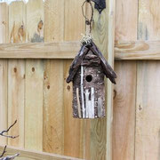 This first picture is the bird house installed new two years ago in Peru, IL