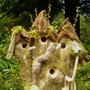 """Hazelnut Hollow"" A four part bird house in one Filbert tree"