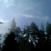 Our Oregon sky, June 2012