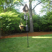 Same Maple bird house first was mounted at the feeding station by the Bell family.