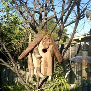 From the Nye's, one of a matching set of Alpine bird houses. This is in Pasadena, CA
