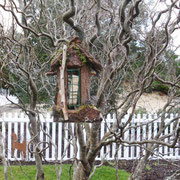 A curly willow grown from a twig by Marge Eichenberger now holds a Fairy Door Suet Feeder 2014