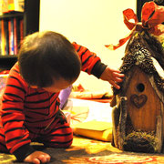 Our bird houses cross appeal to literally every age.