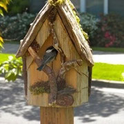 From the Wrights in Corvallis, the Chickadee arrived two days after the house was installed!