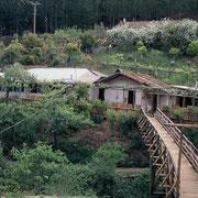 Rodeillo a 23 Km. al sur de Pichilemu