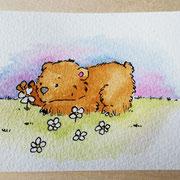 Kleiner Bär auf einer Wiese