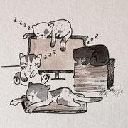 Inktober Tag Nummer 8 - Office Cat