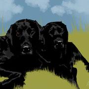 Hunde: Bruno und Brenda