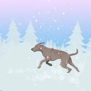 Hund tollt im Schnee herum