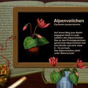Beispiel für Informationen zu der Bergflora