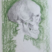 Schädel in Grün, Bleistift und Kreide auf Papier, 2018, 42 cm x 29,5 cm