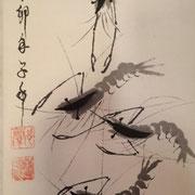 Chorégraphie de crevettes
