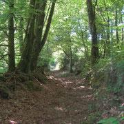 Chemin aux Kaolins