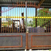 Portail ancien fer forgé (n° 3)